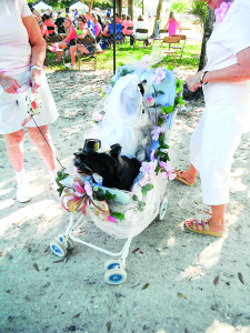 """Staff photo by Mary Kemper """"Bride and groom"""" Oscar and Sophie arrive in wedding finery at the Dogs For Life """"Howl-O-Ween"""" event held Oct. 18 at the Dog Park, Vero Beach. Their owners, who declined to be named, said the two pooches were """"renewing their vows after two years of marriage."""""""