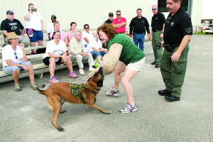 "Photo courtesy of St. Lucie County Sheriff's Office St. Lucie County Sheriff's Office K-9 Unit leader Sgt. Anthony Cavallaro, right, supervises a recent K-9 demonstration showing how a suspect is ""taken down."""